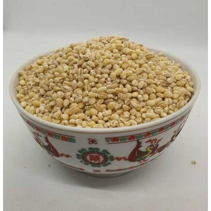 Barley- Holland 荷兰薏米 Pearl Barley (100g/300g/500g/1kg)